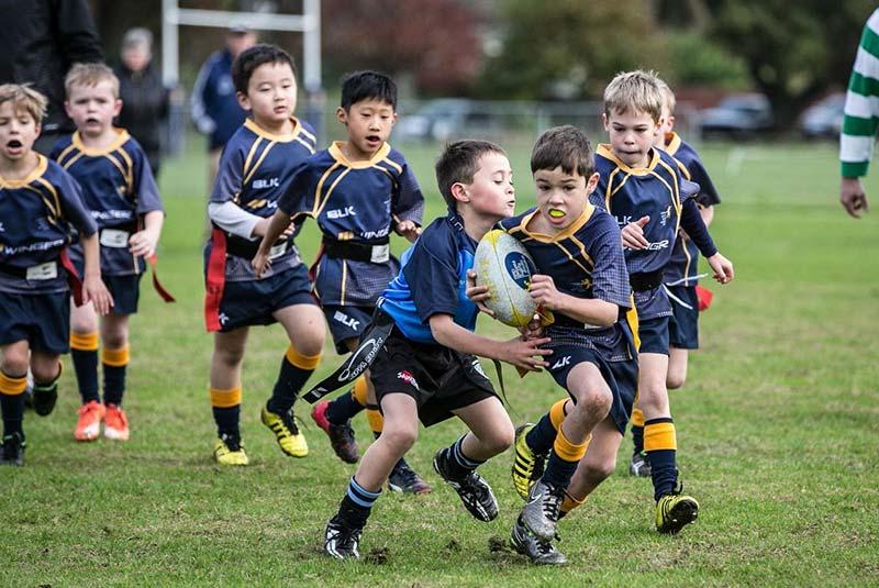 Home Grammar Juniors Rugby Football